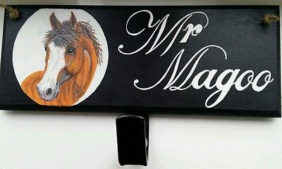 Personalised pony plaque,hand painted with hook,any name colours £12,free post.