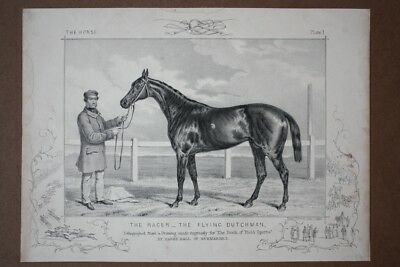 The Horse - The flying Dutchman, Rennpferd, original Lithography um 1860, Blattg
