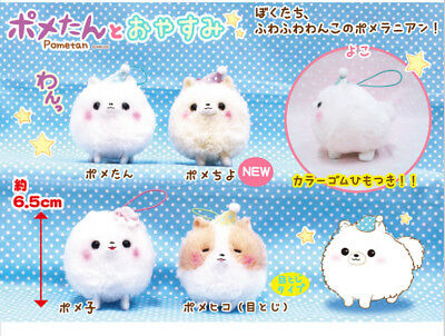 Amuse Pometan Plush Collection (Mini Ball Chain)