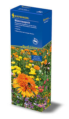 """KIEPENKERL - Flower Mixture for 50m ² """" blütenteppich """" Easy Care"""
