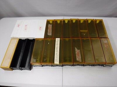 Lot of 22 Universal Slide Trays 30 - 36 Capacity Yankee / Tower / Bell & Howell