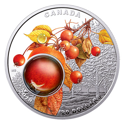 MORNING DEW - MOTHER NATURE'S MAGNIFICATION - 2017 $20 1 oz Fine Silver Coin-RCM