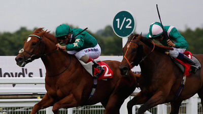 The Favourite Strength Factor Horse Racing system