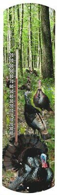 Heritage America by MORCO 375SG Spring Gobbler Outdoor or Indoor