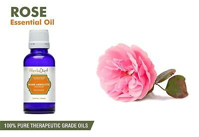 Rose Absolute Essential Oil 100% Pure & Natural Aromatherapy Therapeutic Oils