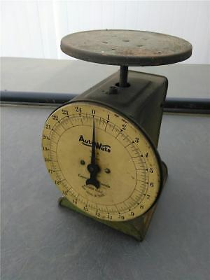 Vtg Primitive Country Auto Wate Kitchen Scale 25 lb Capacity Made in Chicago