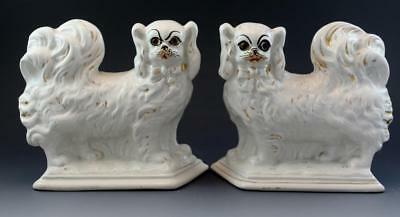 Pair 19C Staffordshire Cavalier King Charles Spaniel Wally Dogs Glass Eyes No Re