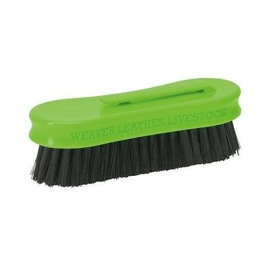 "Weaver Livestock Small Pig Face Brush with Plastic Handle 5"" Long, Lime"