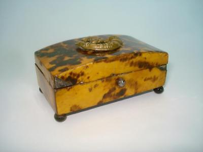 ANTIQUE GEORGIAN FAUX TORTOISE SHELL TRINKET STAMP BOX 1830s ENGLAND FOX HUNT