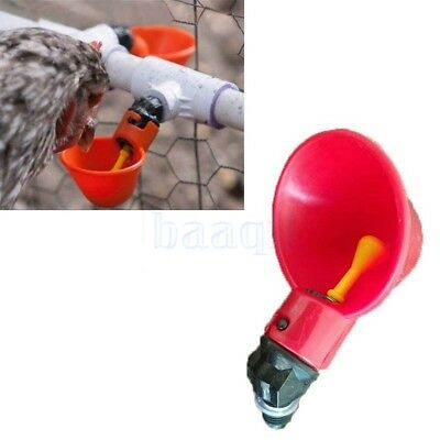 5 Poultry Water Drinking Cups Chicken Hen Plastic Automatic Drinker MA