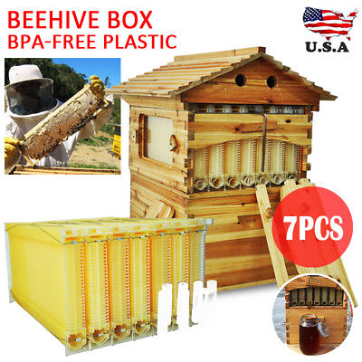 7X Upgraded Auto Flow Honey Hive Beehive Frames + Beekeeping Brood Cedarwood Box