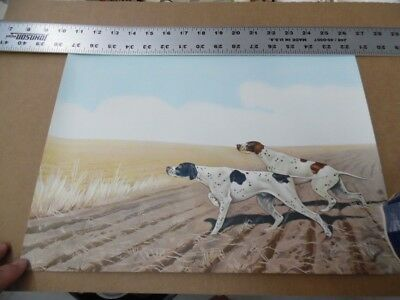 "c.1945 Pointer Hunting Dog Lithograph Print 2375 Vintage Original NOS VG 12""x16"""