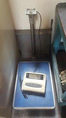 Floor Shipping Scale - EXCELL LHW-300K