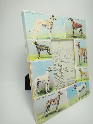 """Greyhound Racer Dog Picture Frame Churchman's Cigarette Cards 8.5"""" x 11"""" Photo"""