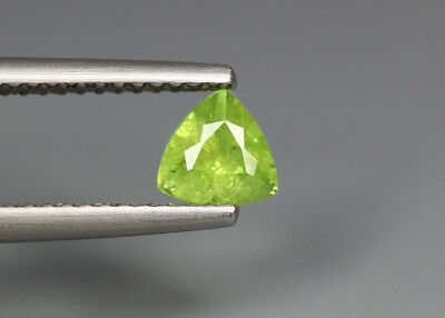 0.60 Cts_Stunning Very Rare Collection_100 % Natural Demantoid Garnet - Russia