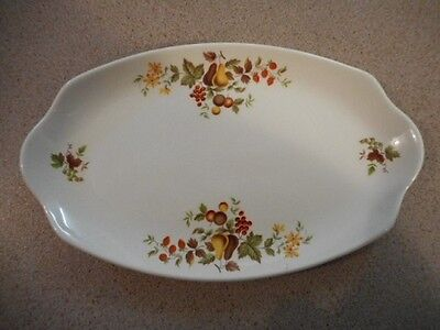 Dainty MYOTT 'Ironstone' Sandwich Plate with Fruit Patterns!
