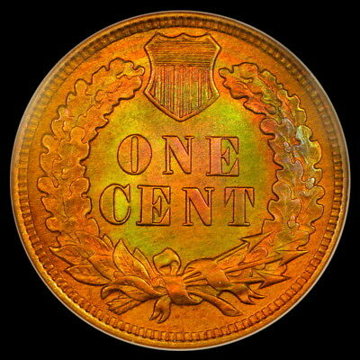 1909 1c Indian Head Cent NGC MS64RB Rainbow Toning Old No Line Fatty Holder
