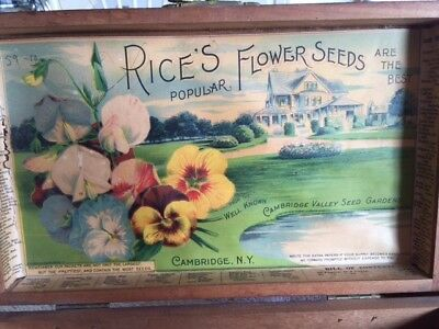 Antique Rices Seed Box Sweet Peas And Pansies, Country Manor