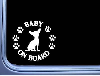"Baby on Board Chihuahua L519 6"" Sticker dog decal"