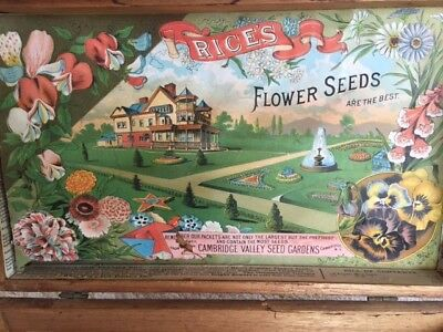 Antique Rices Seed Box, Super Color, Old House, Flowers, Fountain