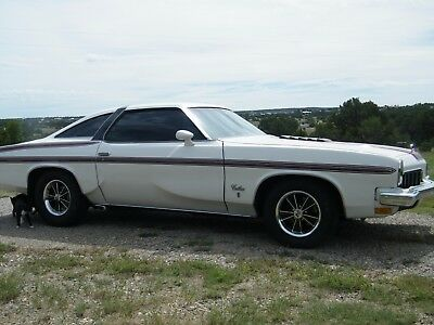 1973 Oldsmobile Cutlass 442 1973 Oldsmobile Cutlass S 73 Olds 442 Hurst Olds