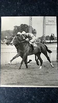 Original presss photo - Kempton Park. Tommy Gosling & Scobie Breasley 1953
