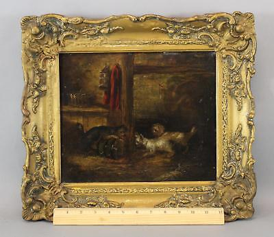 19thC Antique Oil Painting 3 Cairn Terrier Dog George Smith Armfield Attribution
