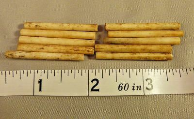 (10) Sioux Indian Bone Hair Pipe Trade Beads For Breastplate 150+ Years Old