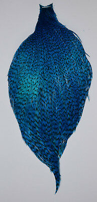 Genetic Teal Blue Grizzle Cock Cape (2)