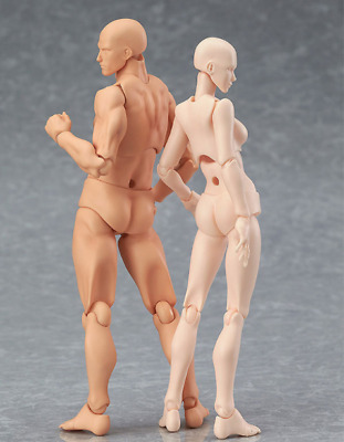 Anime Style Figma Archetype Ferrite Movable BODY KUN / CHAN Action Figure - New