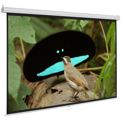 """120"""" 4:3 Projection Screen Manual Pull Down Auto-Lock Projector HD White 96""""x72"""""""