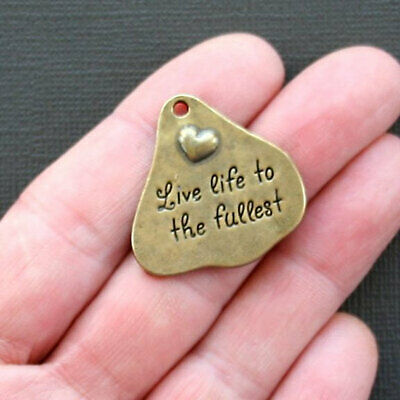2 Large Heart Charms Antique Bronze Tone Live Life - BC739