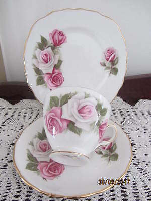 Vintage - Royal Vale - ''roses''  - Cup / Saucer / Plate Trio
