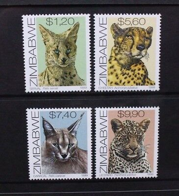 ZIMBABWE 1999 Cats Cheetah Leopard Serval. Set of 4. Mint Never Hinged. SG984/87