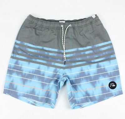 1ccabafddb Quiksilver Mens Swell Vision Volley Boardshorts Ocean Ombre Size M New