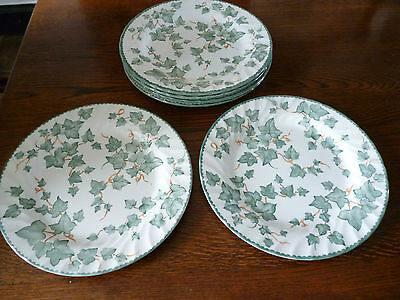 Country Vine ivy leaf china Royal Stafford stamp/none sold in BHS plates