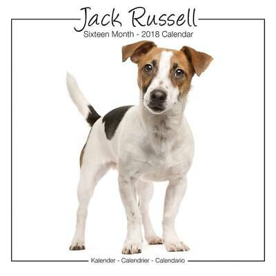 Calendrier Jack Russell Studio 2018