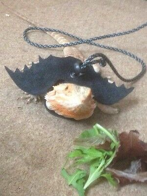 bearded dragon harness with wings - Lead/leash