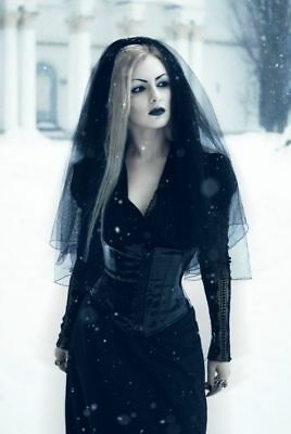 HALLOWEEN BLACK  VEIL & COMB FANCY DRESS Corpse Bride, Black Widow,Goth.