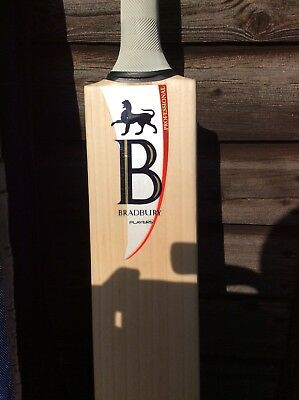 Bradbury Professional Players Cricket Bat - Brand New - SH - RRP £450