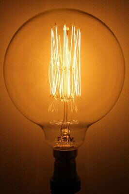 Edison Bulb - X Large Round Squirrel Cage Filament