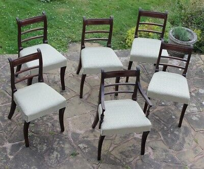 Set of 5 + 1 Carver Regency Mahogany Sabre Leg Dining Chairs