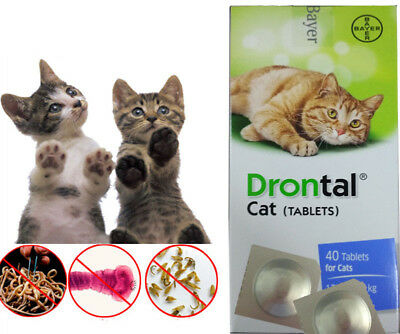 Brand New Drontal for Cats (4 Tablets) Genuine Bayer USA Seller Fast Shipping