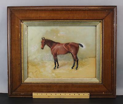Antique ARTHUR LOUIS TOWNSHEND Portrait Watercolor Painting Thoroughbred Horse