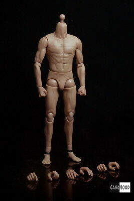 """GANGHOOD  001 12"""" bruce lee asian Muscular Figure Body fit For 1/6 Hot Toys Head"""