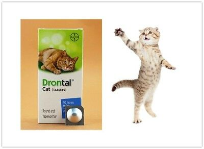 Drontal for Cats Genuine Bayer 4 Tablets Dewormer Allworms Round  Tap Worm US