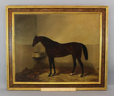 Antique 1849 WILLIAM LUKER SR Oil Painting, Thoroughbred Racehorse in Stable NR