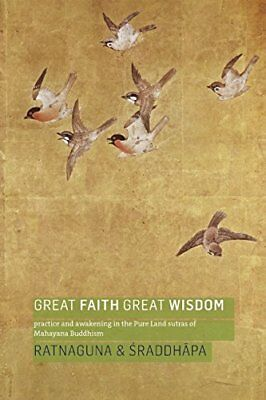 Great Faith, Great Wisdom: Practice and Awakening in the Pure Land Sutras of Ma
