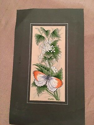 English Cashs Silk Embroidered Woven Pictures Butterfly