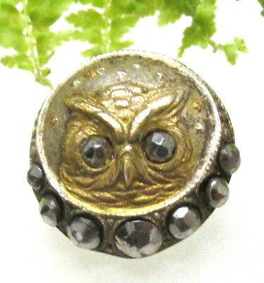 Beautiful Victorian Metal Owl Button W/ Cut Steel Eyes & Border T29